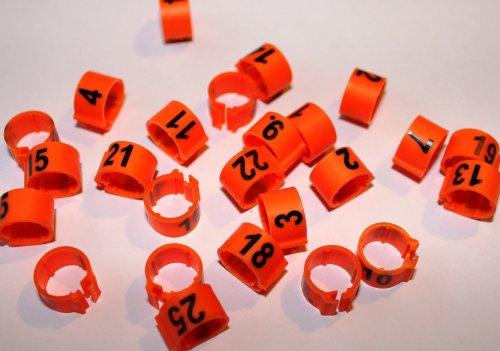 Clipsringe 08 mm nummeriert 1 - 25 orange 25 Stück
