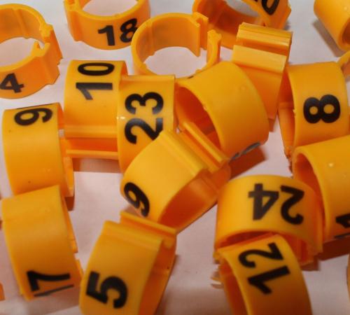 Clipsringe 08 mm nummeriert 1 - 25 gelb 25 Stück