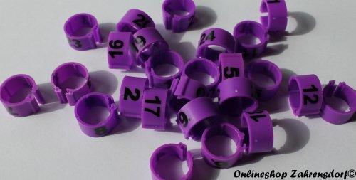 Clipsringe 12 mm nummeriert 1-25 lila 25 Stück