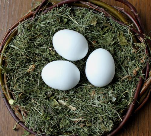 3 Nesteier aus Vollkunststoff für Enten und schwere Hühner