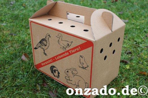 Transportbox aus Karton klein