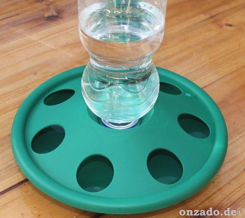 Innovative grüne Kükentränke aus Kunststoff
