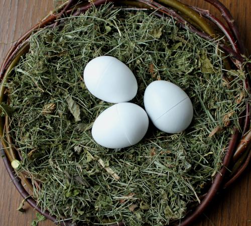 3 Nesteier für Tauben aus Vollkunststoff
