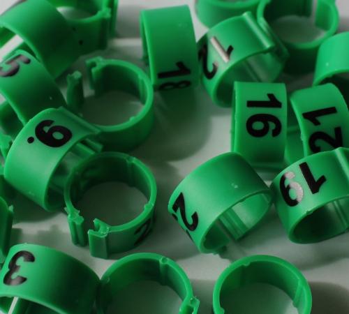 Clipsringe nummeriert